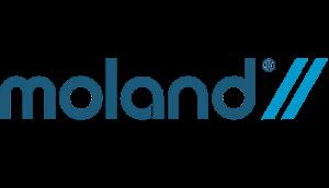 پارکت چوبی مهندسی Moland